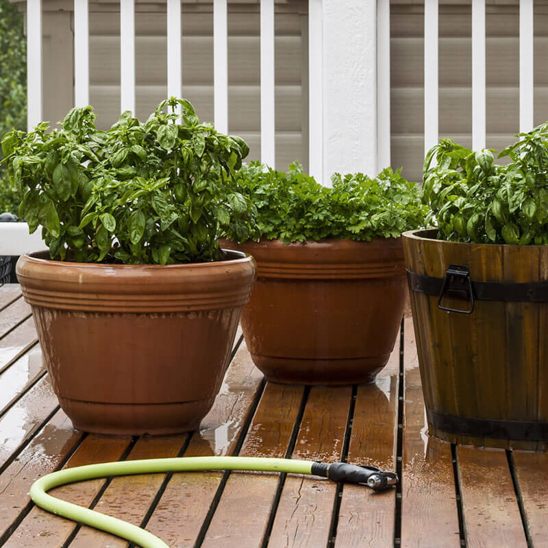 Spruce Up Your Homestead with a Deck Garden!