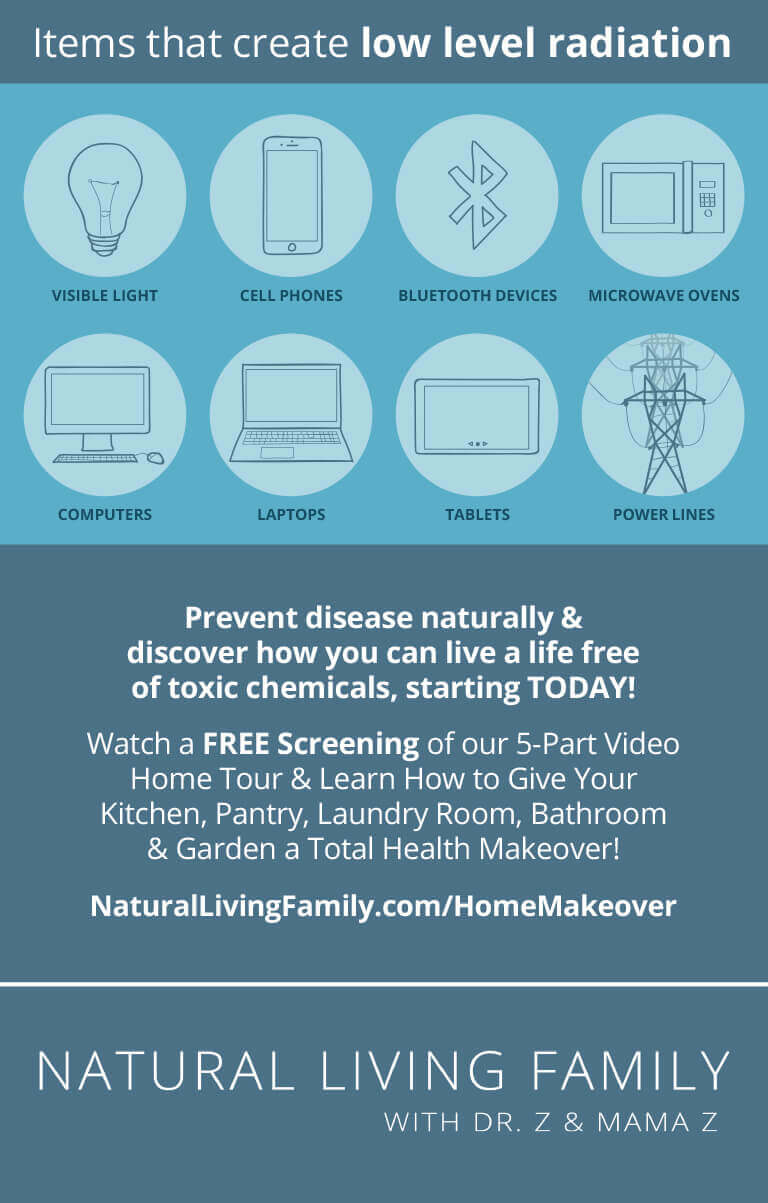 Sources of EMF in Your Home Infographic - What is EMF and Microwave Radiation