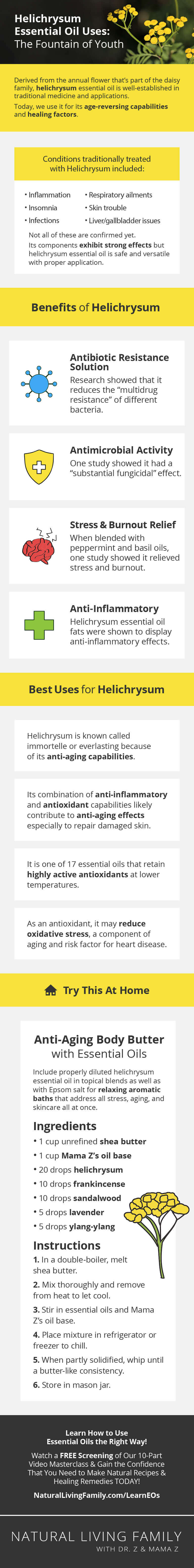 Helichrysum Essential Oil Uses The Fountain of Youth